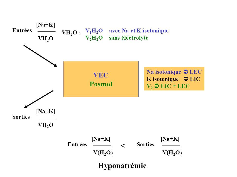< Hyponatrémie VEC Posmol Entrées [Na+K] VH2O